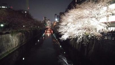 Meguro River, Meguro, Tokyo