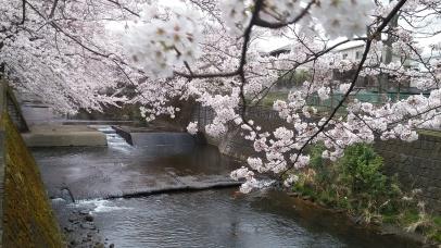 Onda RIver, Machida, Tokyo
