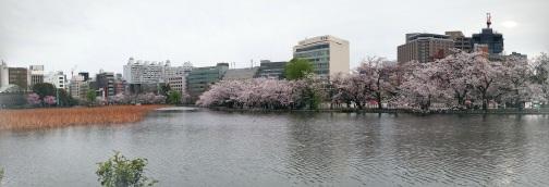 Ueno Park, Bunkyo, Tokyo