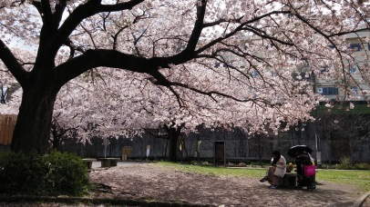 Minamitsukushino Park, Machida, Tokyo