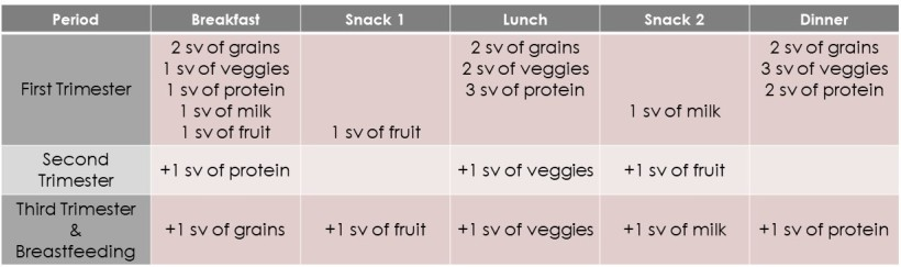 Nutrients for Pregnancy 2