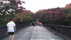 November 3, 2017 - Yoyogi Koen Bridge