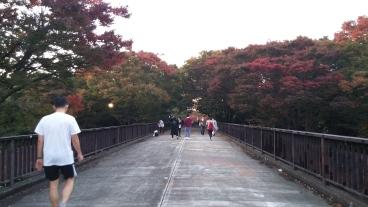 November 3, 2017 - Yoyogi Koen Bridge